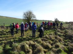 Ludgershall walk - by Dave Clark - 24/01/2015