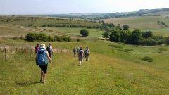 Ridgeway near Letcombe Bassett - 12/07/2014