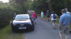 A gay walk in Newton Tony - 16/07/2014