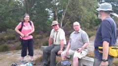 Hill above The Sculpture Park, Rushmoor - 20/07/2014