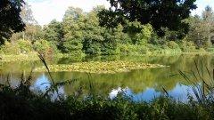 Headley Park - 31/08/2014