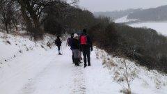 South of East Woodhay - 20/01/2013