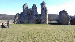 Waverley Abbey - 08/02/2015